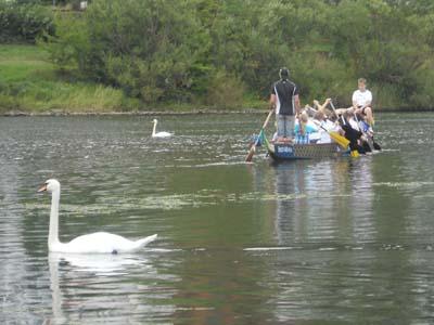 Drachenboot-Schnupperpaddeln_13.08.2011_096.jpg
